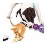 Hunde & Katzenzubehör
