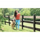 Fern Trainer »Basic« PetSafe Hundeerziehung · 70m, ab 3,6kg