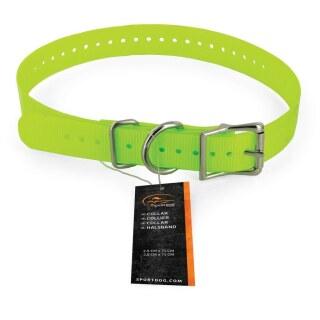 Hundehalsbänder »sportDOG« ab 20cm Hals · 2,5cm breit, gelb