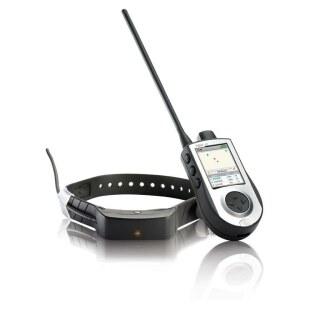 Teletakt »sportDOG TEK 1.0« Handgerät, Hundehalsband mit GPS · 11km