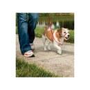 Hundeleine »Easy Walk« für Sheltie,...