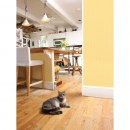 Katzenschreck »SSScat« Katzenabschreckungsspray · mit Sensor