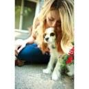 Unsichtbarer Hundezaun »Deluxe« erweiterbar auf 10ha · ab 3,6kg