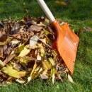 Laubbesen »Classic« auch Gartenbesen & Rasenbesen · 40cm
