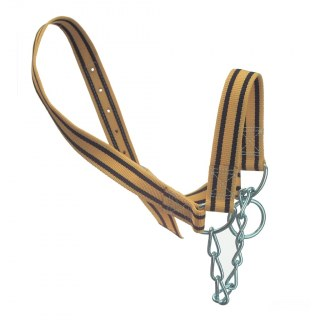 Kuhhalfter »Trevira« zum Führen & Anbinden · inkl. Kinnkette