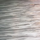 Weidezaundraht »Profi« Polydraht · 500m