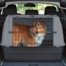 Hundebox Katzentransportbox »PetSafe / Trixie L« 100x60x65cm