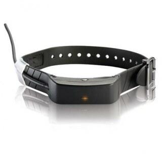 teletac sportdog tek 1 0 zusatz hundehalsband mit gps g nstig. Black Bedroom Furniture Sets. Home Design Ideas